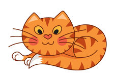 Cartoon plump kitty, vector illustration of red Royalty Free Stock Images