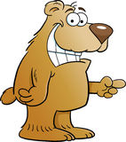 Cartoon Pointing Bear Stock Photography