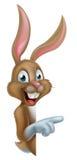Cartoon Pointing Easter Bunny Stock Photos