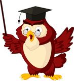 Cartoon of pointing wise owl Stock Photography
