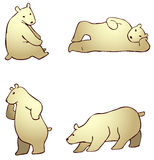 Cartoon polar bear in different actions (vector) Stock Image