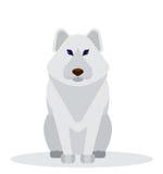 Cartoon polar gray fur dog. Royalty Free Stock Photography