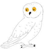 Cartoon polar owl for babies and little kids Royalty Free Stock Image