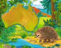 Cartoon porcupine with continent map Royalty Free Stock Images