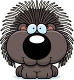 Cartoon Porcupine Smiling Stock Photos