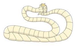 Cartoon pork tapeworm Stock Photos