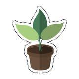 Cartoon pot plant garden concept Royalty Free Stock Image