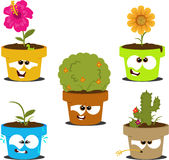 Cartoon Pots Royalty Free Stock Image