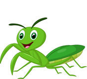 Cartoon praying mantis Stock Image