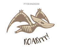 Cartoon pteranodon dinosaur fossil. Vector illustration Stock Images