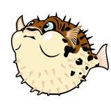 Cartoon puffer fish. Puffer fish,blow fish,cartoon image isolated on white background,children illustration Royalty Free Stock Image
