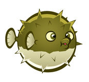 Cartoon puffer fish. Cartoon spherical puffer fish on the white background Stock Photos