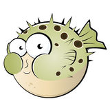 Cartoon pufferfish or blowfish Royalty Free Stock Image