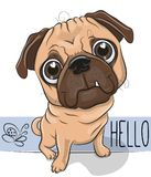 Cartoon Pug Dog isolated on a white background Royalty Free Stock Images