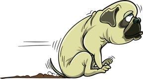 Cartoon pug dog scraping its bum. Isolated on white Stock Image