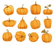Free Cartoon Pumpkin Flat Icons Set. Orange And Yellow Autumn Pumpkins. Different Shapes And Sizes Of Pumpkin Or Gourd Stock Photos - 193876043