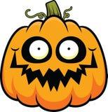 Cartoon Pumpkin Happy Stock Photography