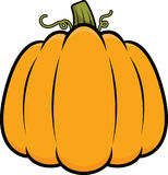 Cartoon Pumpkin Stock Image