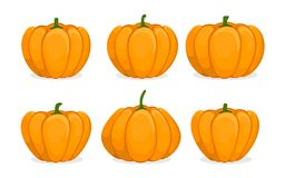 Free Cartoon Pumpkin Set. Different Shapes And Sizes Orange Gourd. Element For Autumn Halloween Party Invitation Decoration Royalty Free Stock Photography - 136067487