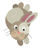 Cartoon rabbit Stock Photos
