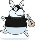 Cartoon Rabbit Burglar. A cartoon illustration of a rabbit burglar stealing money Stock Images
