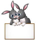 Cartoon rabbit couples holding empty board Stock Image