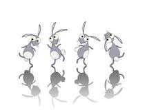 Cartoon rabbit. Dancing rabbits cartoon set  over white background Royalty Free Stock Photos