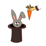 Cartoon rabbit in the hat trick  on white background. Stock Photo
