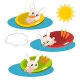 Cartoon rabbit in the pool illustration Stock Photos
