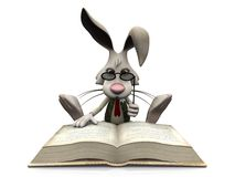 Cartoon rabbit reading big book. Stock Image