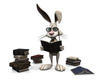 Cartoon rabbit reading a book. Royalty Free Stock Photo