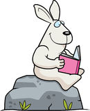 Cartoon Rabbit Reading Royalty Free Stock Images