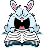 Cartoon Rabbit Reading Stock Photos