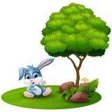 Cartoon rabbit sitting under a tree on a white background Stock Image