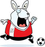 Cartoon Rabbit Soccer Royalty Free Stock Image