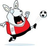 Cartoon Rabbit Soccer Kick Royalty Free Stock Photo