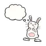 cartoon rabbit with thought bubble Stock Photography