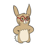 Cartoon rabbit wearing spectacles Royalty Free Stock Images