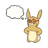 cartoon rabbit wearing spectacles with thought bubble Stock Images