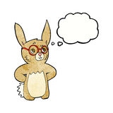 Cartoon rabbit wearing spectacles with thought bubble Stock Image
