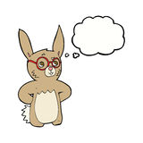 Cartoon rabbit wearing spectacles with thought bubble Stock Photos