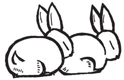 Cartoon Rabbits Royalty Free Stock Images