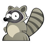 Cartoon raccoon. Illustration of funny cartoon raccoon, isolated on white background Royalty Free Stock Photos