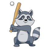 Cartoon raccoon baseball player character Stock Photography