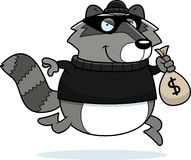 Cartoon Raccoon Burglar Royalty Free Stock Image