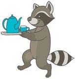 Cartoon raccoon carries tray of tea and teacup Stock Photos