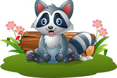 Cartoon raccoon in the forest stock illustration
