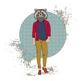 Cartoon Raccoon Hipster Wear Fashion Clothes Retro Abstract Background. Vector Illustration Royalty Free Stock Photo