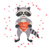 Cartoon raccoon holding valentine heart card. Stock Images