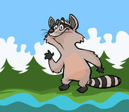 Cartoon raccoon. Royalty Free Stock Photography